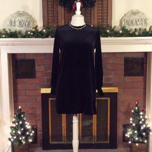 Zara Collection Raw Hem Velvet Mod Mini Dress